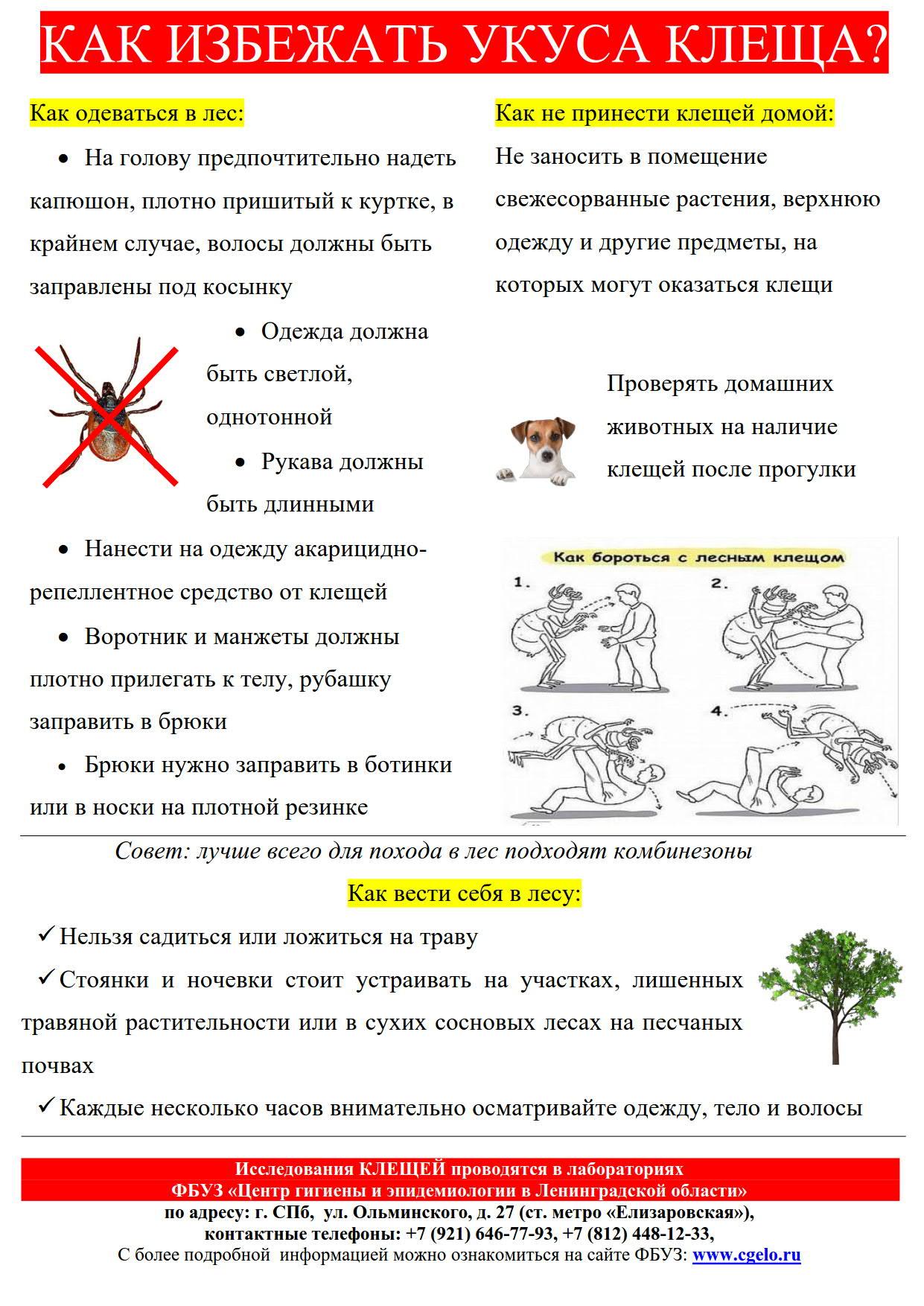 КАК ИЗБЕЖАТЬ УКУСА КЛЕЩА_1